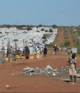 SSD_UNHouse_IDPIntentionsSurvey