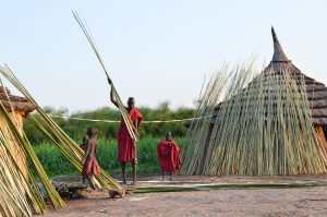 IDPs on Jonglei Island Twic East Couty Jonglei State