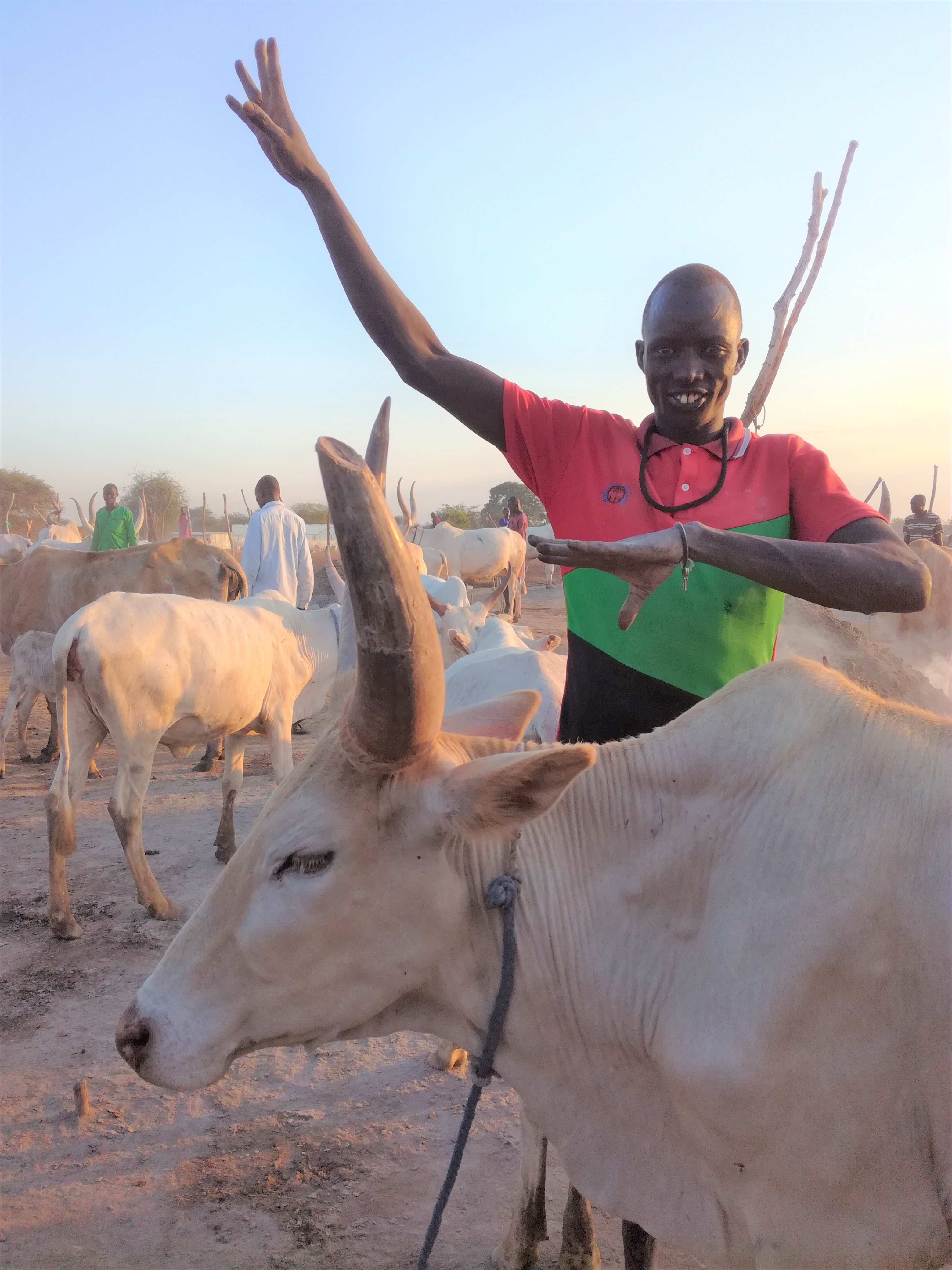 A cattle herder poses for a photo in a cattle camp in Jonglei state during REACH assessment in November 2016. Agro-pastoralist communities in South Sudan rely heavily on livestock for their livelihoods. ©REACH/2018