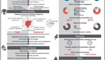 Defining community-level vulnerabilities in Lebanon