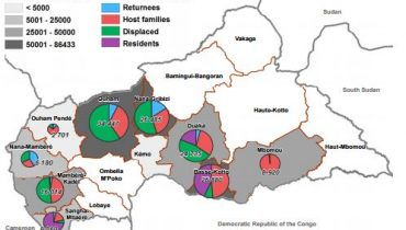 Central African Republic: REACH support to the Rapid Response Mechanism 2015 overview