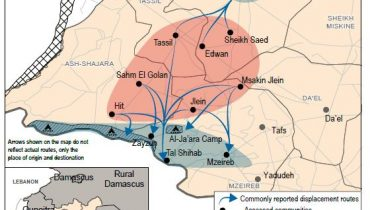Syria: REACH's Rapid Assessment of Displacement and Needs in Southwest Dar'a Governorate