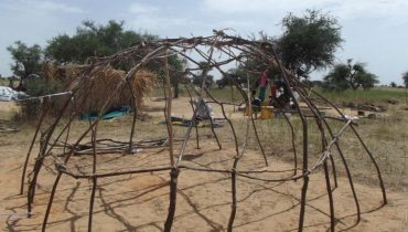 Niger: Latest findings from REACH's shelter assessment in Diffa